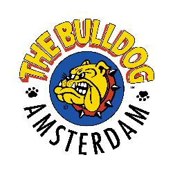 bulldog-amsterdam-livorno
