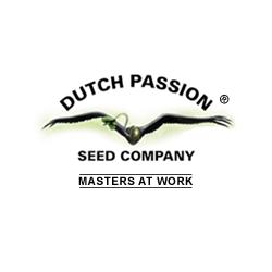 dutch-passion