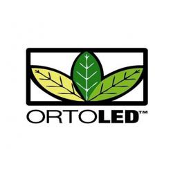 ortoled-cannabis